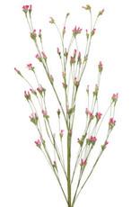 Hot Pink Green Fields Mini Bud Spray