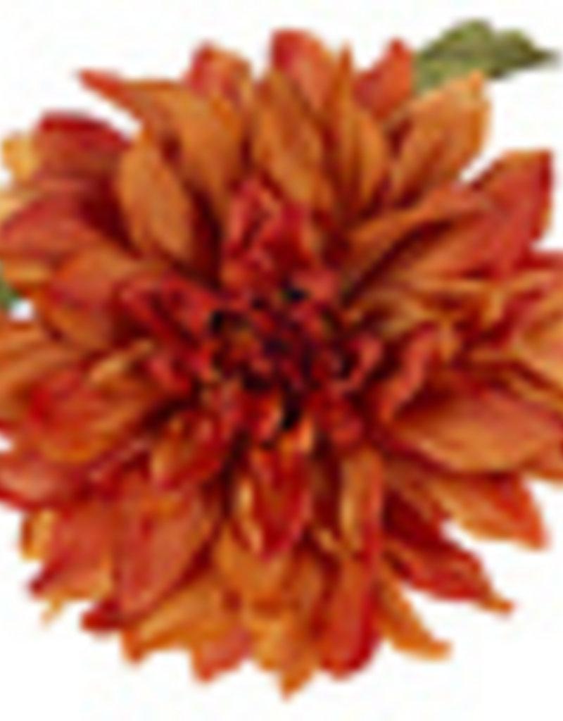 Orange Dahlia Stem