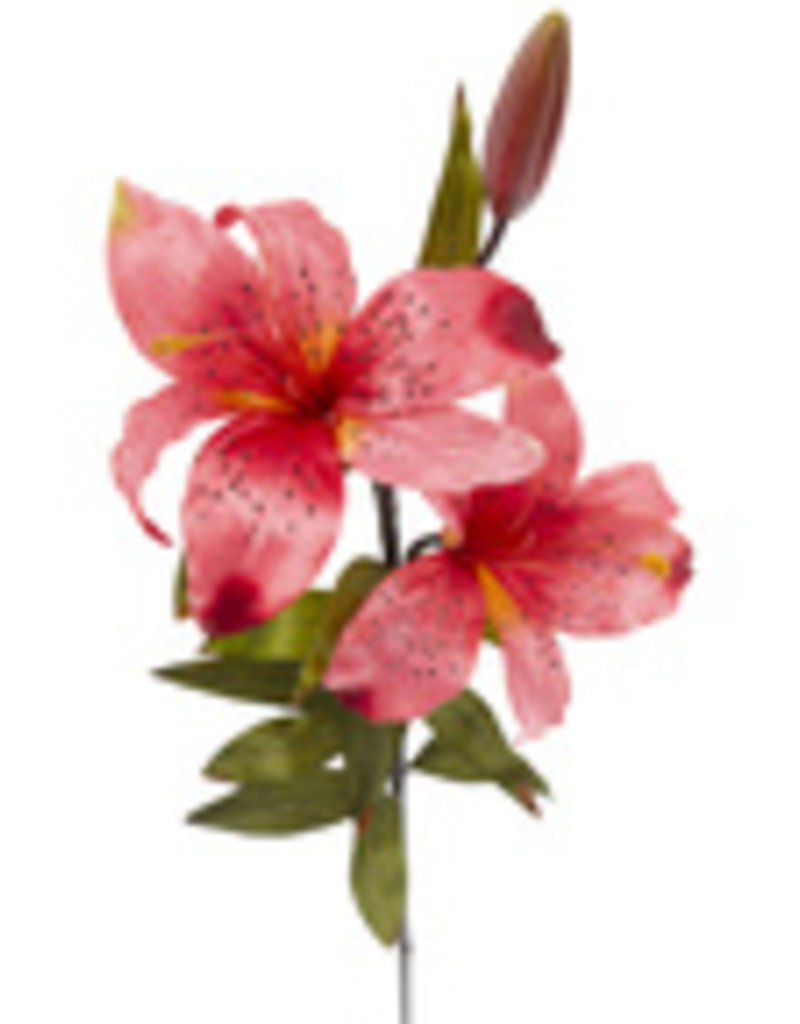 Pink Lilly Spray