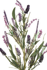 Purple Lavender Spray