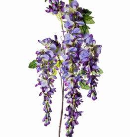 LG Wisteria Purple