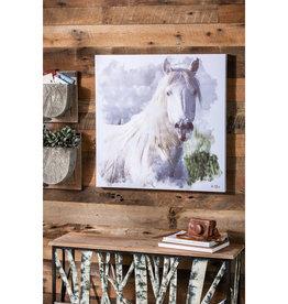 White Horse Canvas