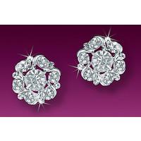 Company Earrings