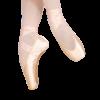 Grishko Elite Pointe Shoe