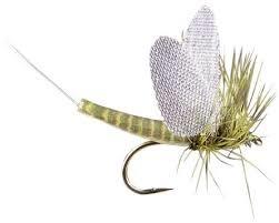 Montana Fly Green Drake Dry