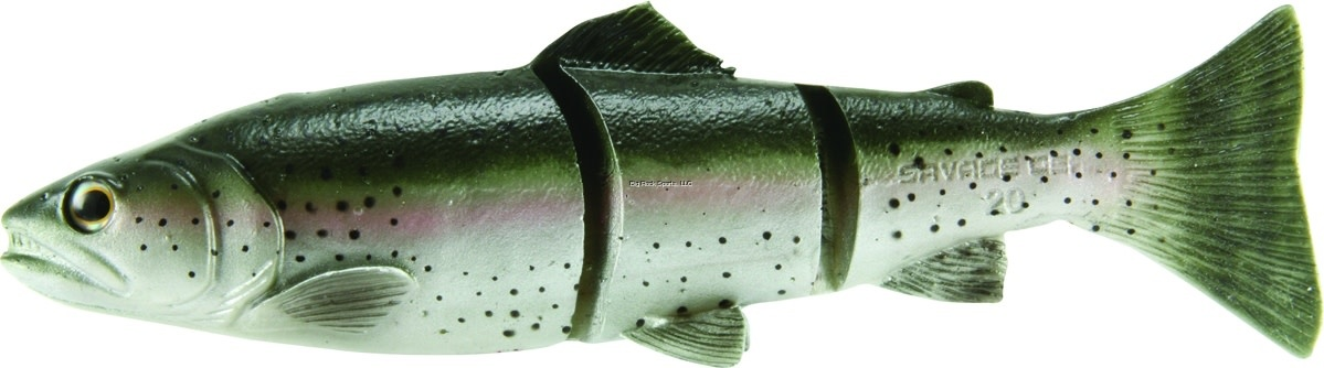 Savage Gear Savage Gear LTMS-200-LT 3D Line Thru Trout Segmented Swimbait
