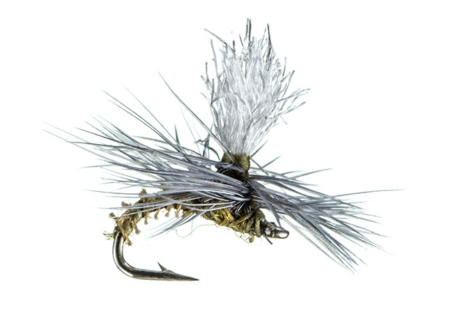 Montana Fly Christiaen's GT Adult Bwo Para 16