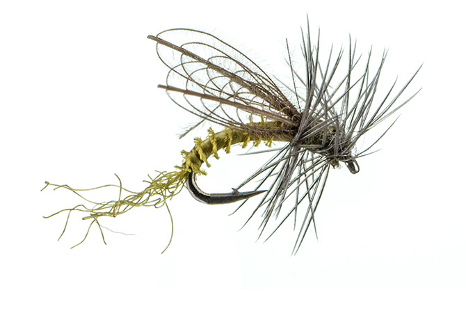 Montana Fly CDC Winged Emerger Para