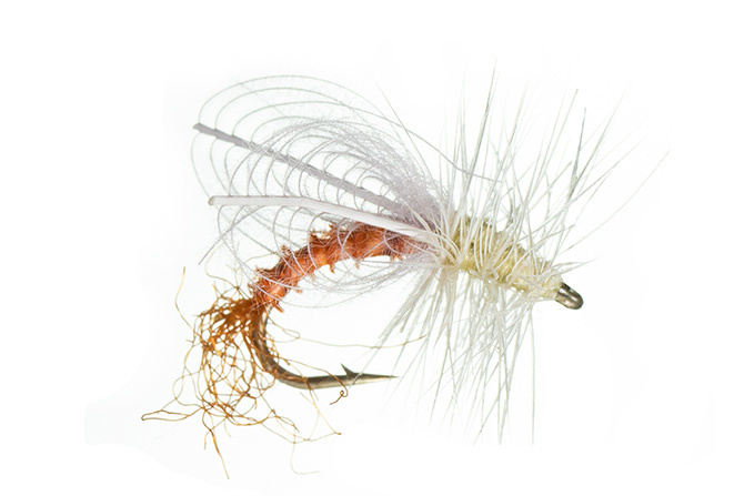 Montana Fly CDC Winged Emerger PMD