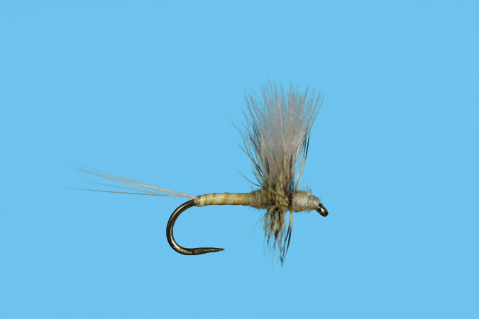 Solitude Fly PMD Thorax