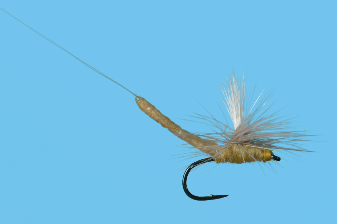 Solitude Fly PMD Para Extended Body