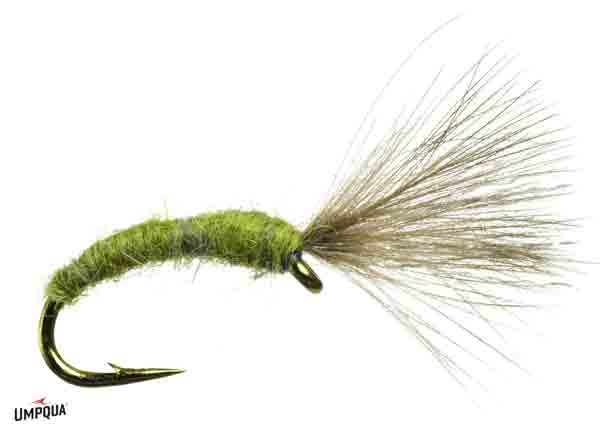Umpqua Mole Fly Craven's Brown