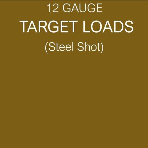 TARGET (STEEL SHOT)