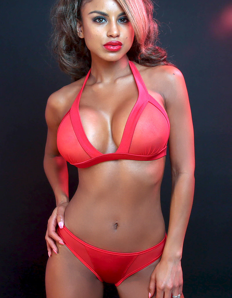 Just to Flirt 2pc Bikini with Mesh Panels and Scrunch Back - Assorted Colors - OS