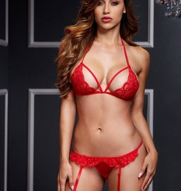 Baci Red Crotchless Garter Set - OS