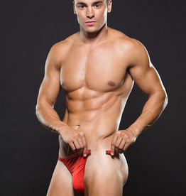 Envy MICROFIBER MAGNETIC GSTRING - RED - LXL