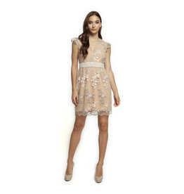 Dex CAP SLV V-NECK EMBROIDERED MESH DRESS