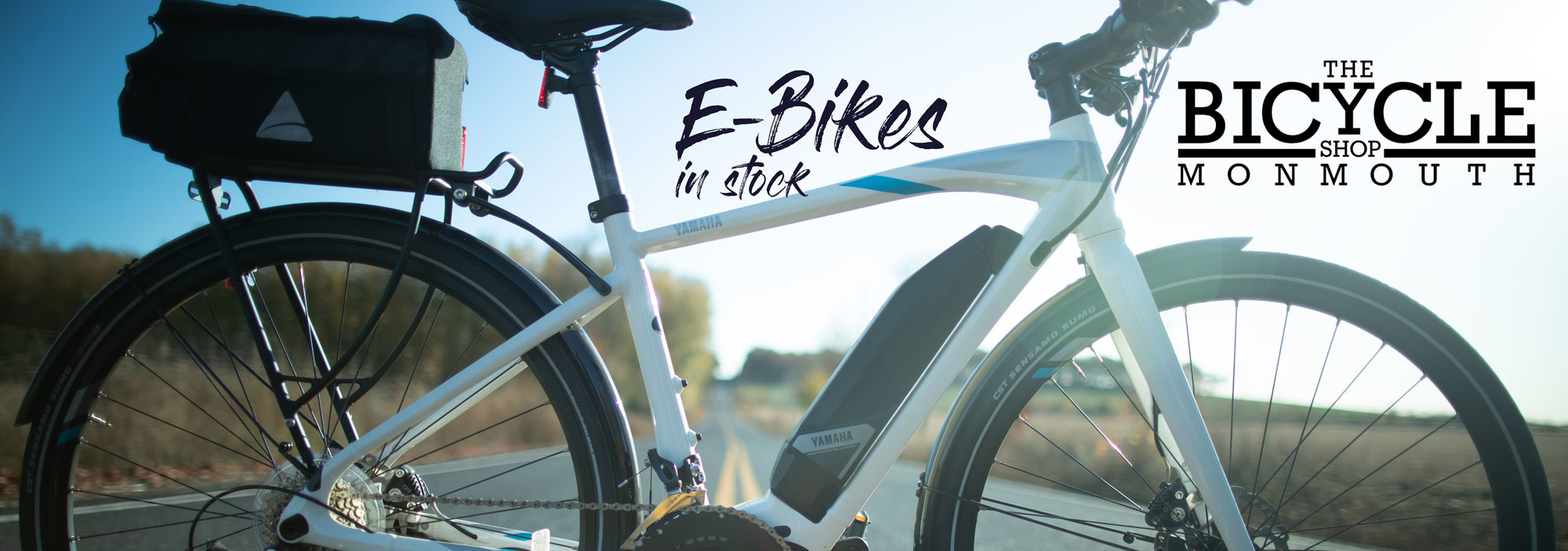 E-bikes in Stock!