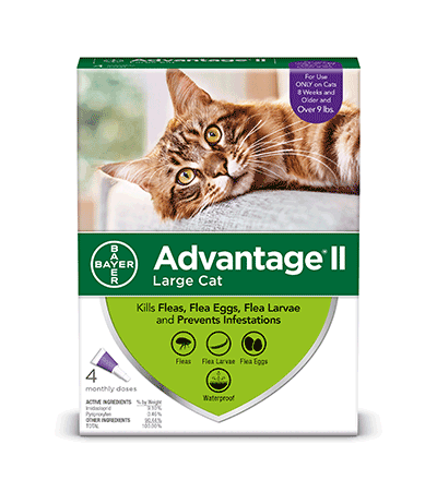 Bayer Healthcare ADVANTAGE II Large Cat Over 9 lbs. 4pk Product Image