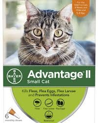 Bayer Healthcare ADVANTAGE II Small Cat 5 - 9 lbs. 4pk Product Image