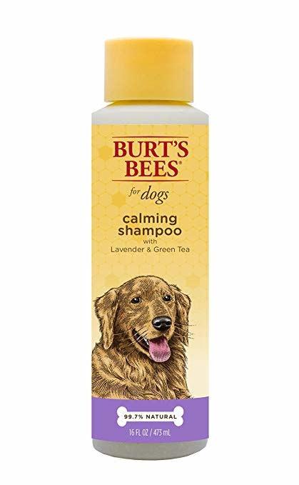 Burt's Bees Burt's Bee's Natural Pet Care - Calming shampoo 16 oz Product Image
