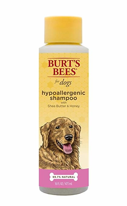 Burt's Bees Burt's Bee's Natural Pet Care - Hypoallergenic Shampoo 16oz Product Image
