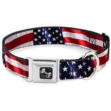 Buckle Down Buckle-Down American Flag Small Collar Product Image