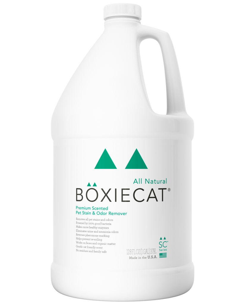 BoxieCat BoxieCat Stain & Odor Scented Ready to Use Gallon Product Image