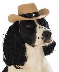 Rubies's Pet Shop Rubie's Pet Cowboy Hat S/M Product Image