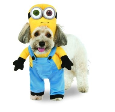 Rubies's Pet Shop Rubie's Pet Minion Bob Costume XS Product Image