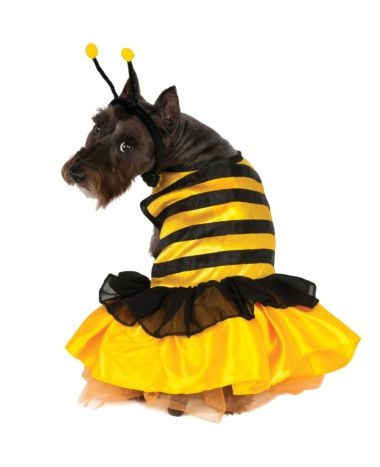 Rubies's Pet Shop Rubie's Pet Baby Bumblebee Costume Small Product Image
