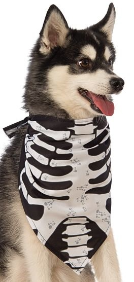 Rubies's Pet Shop Rubie's Pet Shop Skeleton Bandana M/L Product Image