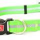 WIGZI Wigzi Collar Green Medium Product Image