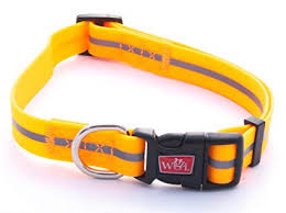 WIGZI Wigzi Collar Orange Extra Small Product Image