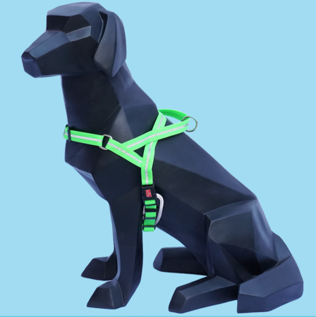 WIGZI Wigzi Reflective Harness Green Medium Product Image