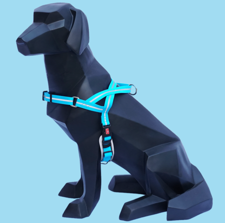 WIGZI Wigzi Reflective Harness Blue Small Product Image