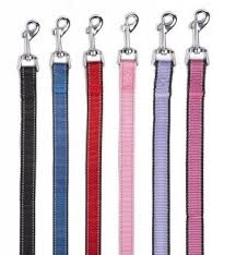 "Bark Appeal Bark Appeal Reflective Leash 3/4"" Raspberry Product Image"