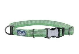 "Coastal Pet Coastal K9 Meadow Green 5/8"" Extra Small Adjustable Collar Product Image"