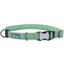 "Coastal Pet Coastal K9 Meadow Green 5/8"" Small Adjustable Collar Product Image"