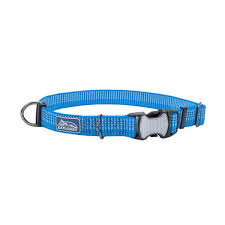 "Coastal Pet Coastal K9 Lake Blue 5/8"" Small Adjustable Collar Product Image"