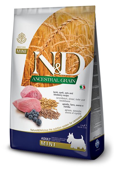 Farmina Farmina N&D Ancestral Grain Lamb and Blueberry Medium & Maxi 26.4lbs Product Image