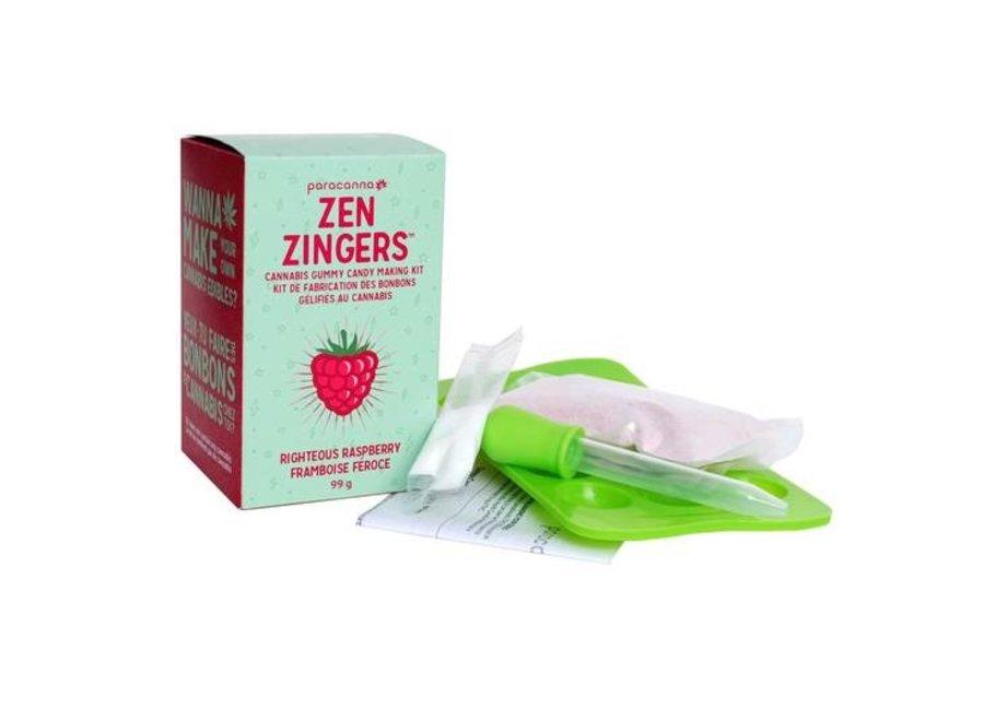 zen zinger raspberry kit