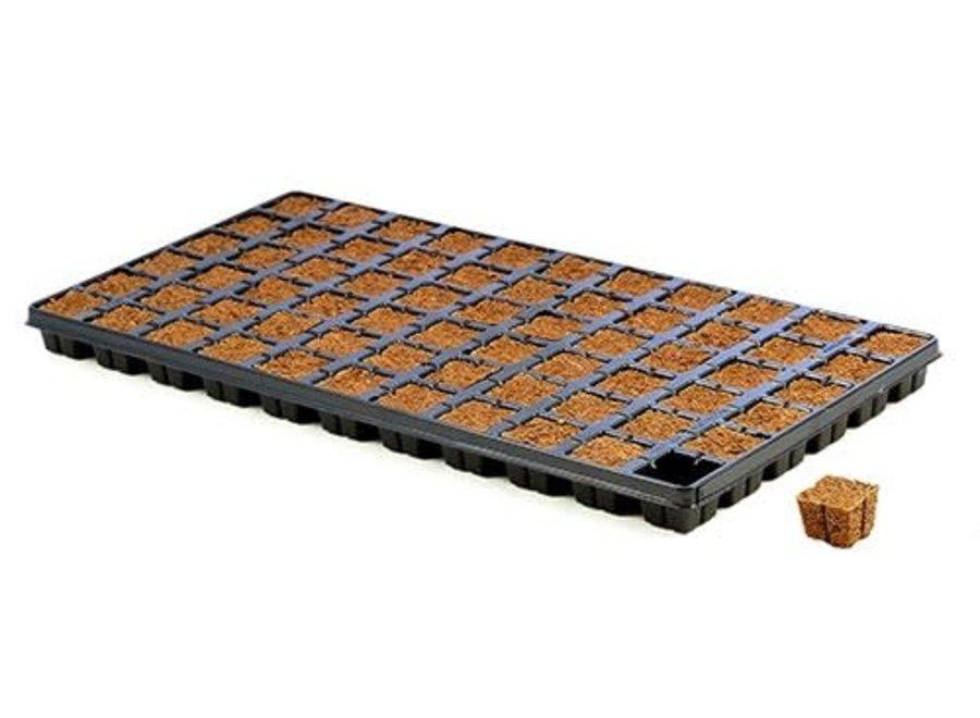 Eazy Plug 66 count tray