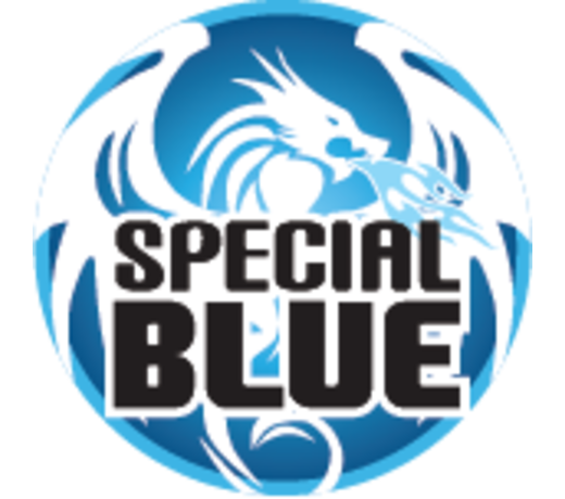 special blue torch