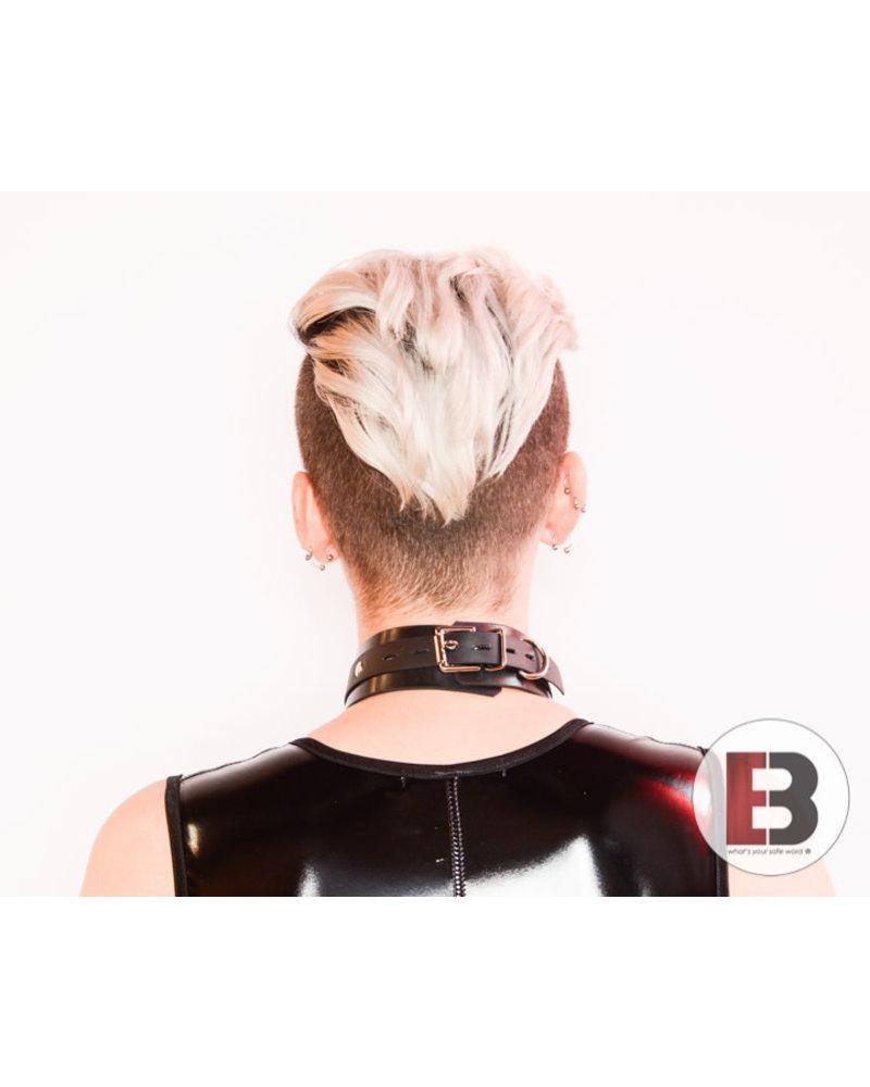Aslan Leather Rubber Collar