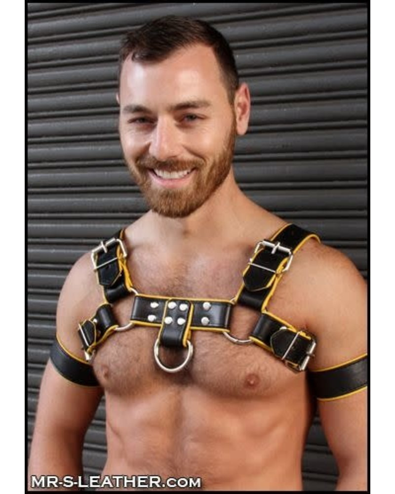 Mr. S Leather Piped Bulldog Harness