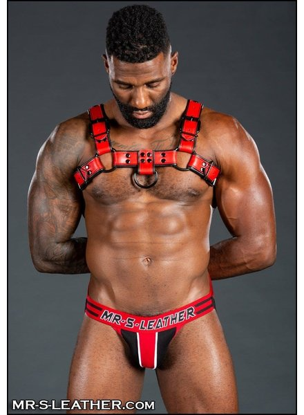 Mr. S Leather Dark Room Bulldog Harness