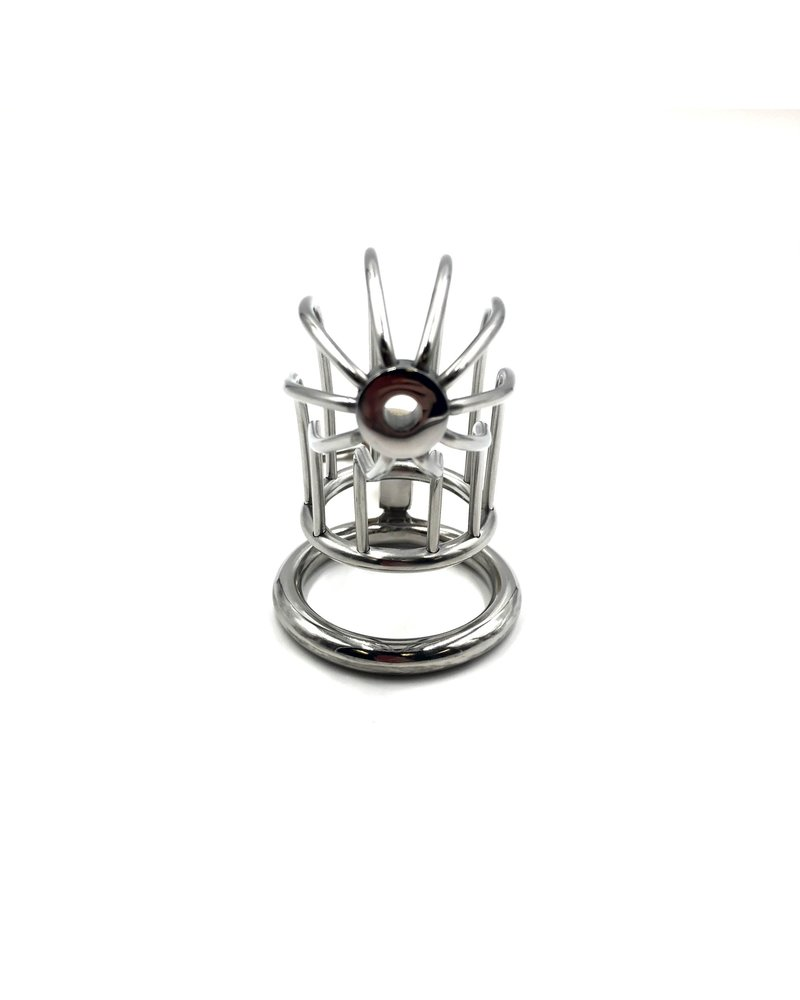 Bondesque Bird Cage Chastity Device #2