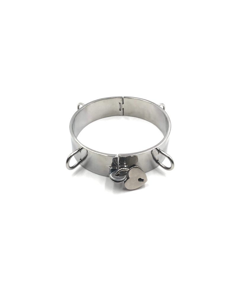 Bondesque Steel Collar with D rings