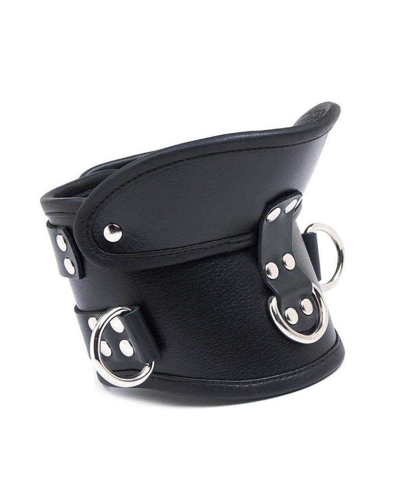 STOCKROOM Deluxe Padded Leather Posture Collar w/ D Rings
